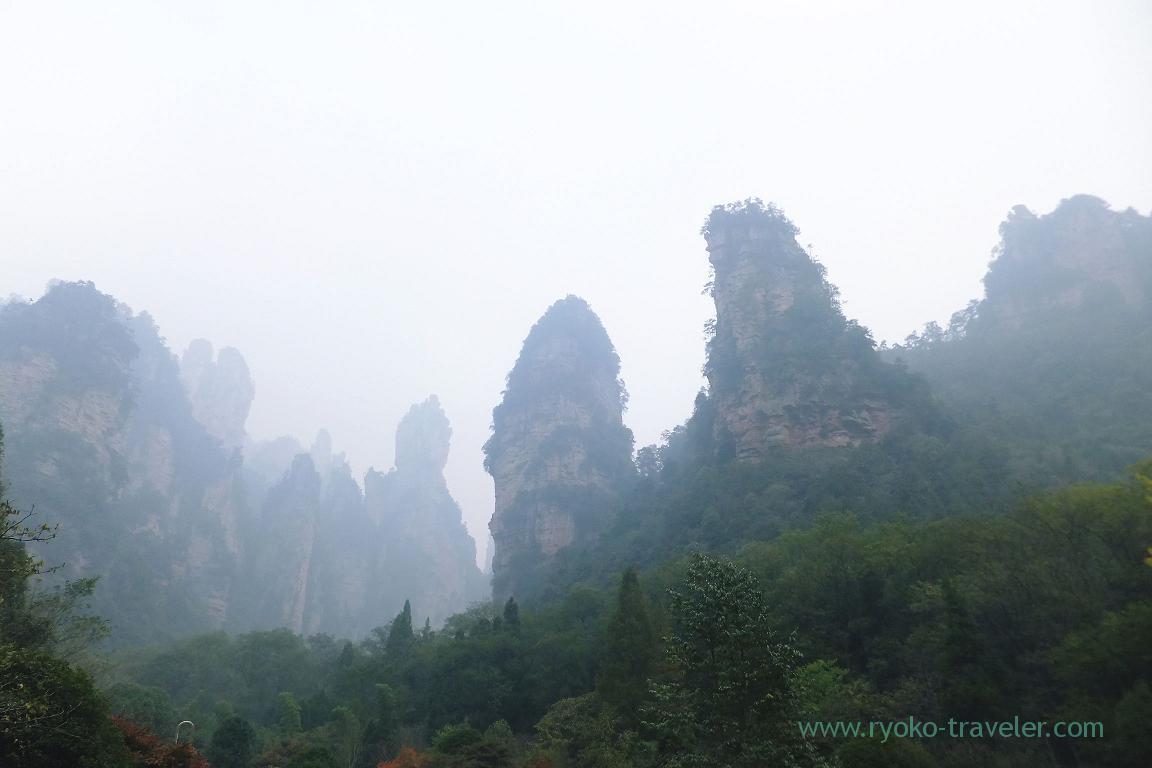 Great view, Yangjiajie scenic area,Zhangjiajie(Zhangjiajie and feng huang 2015)