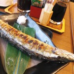 Kachidoki : Saury at Ikenoya (池のや)