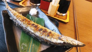 Kachidoki : Saury at Ikenoya (池のや)