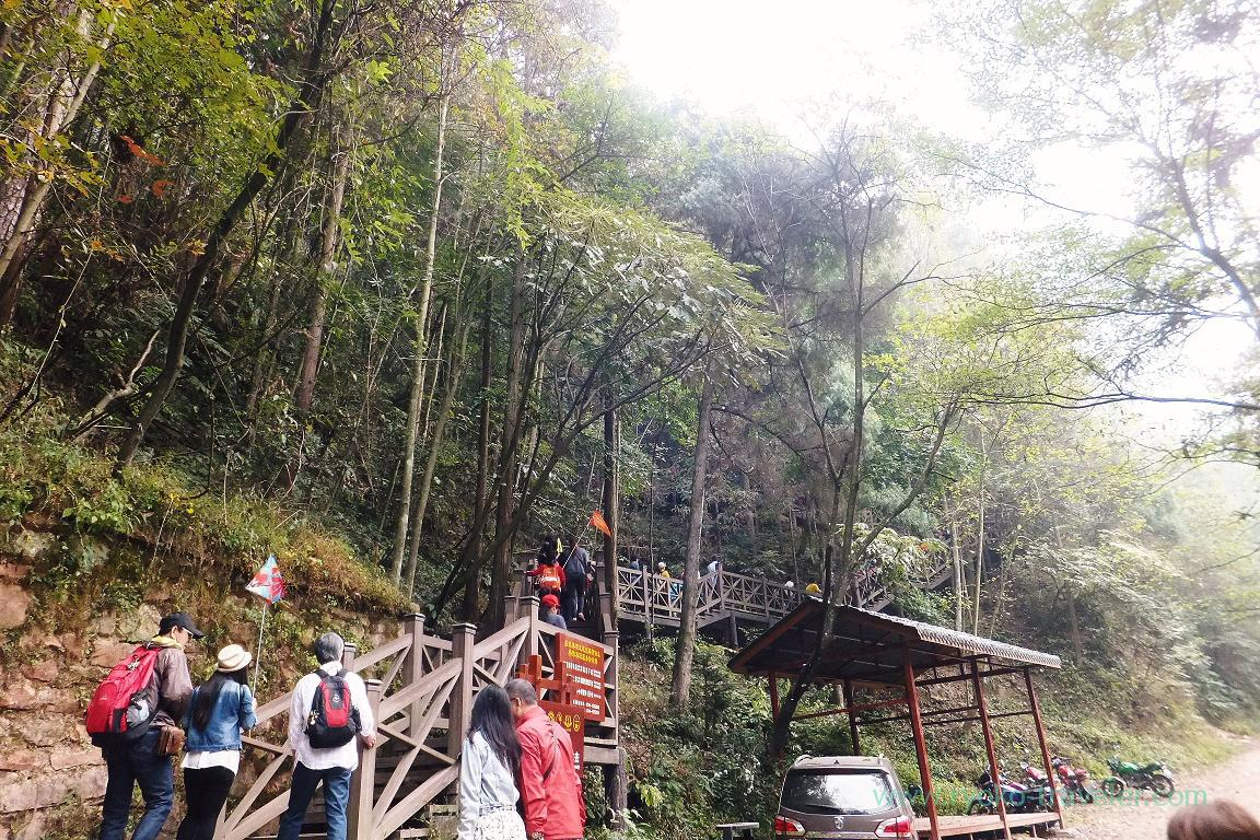 Let's go !, Yangjiajie scenic area,Zhangjiajie(Zhangjiajie and feng huang 2015)