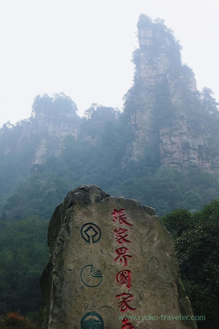 Mists, Yangjiajie scenic area,Zhangjiajie(Zhangjiajie and feng huang 2015)
