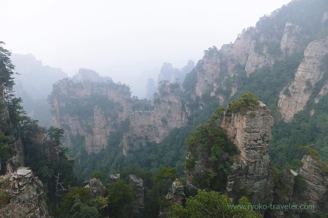 View 4, Cable car to Yuangjiajie ,Zhangjiajie(Zhangjiajie and feng huang 2015)