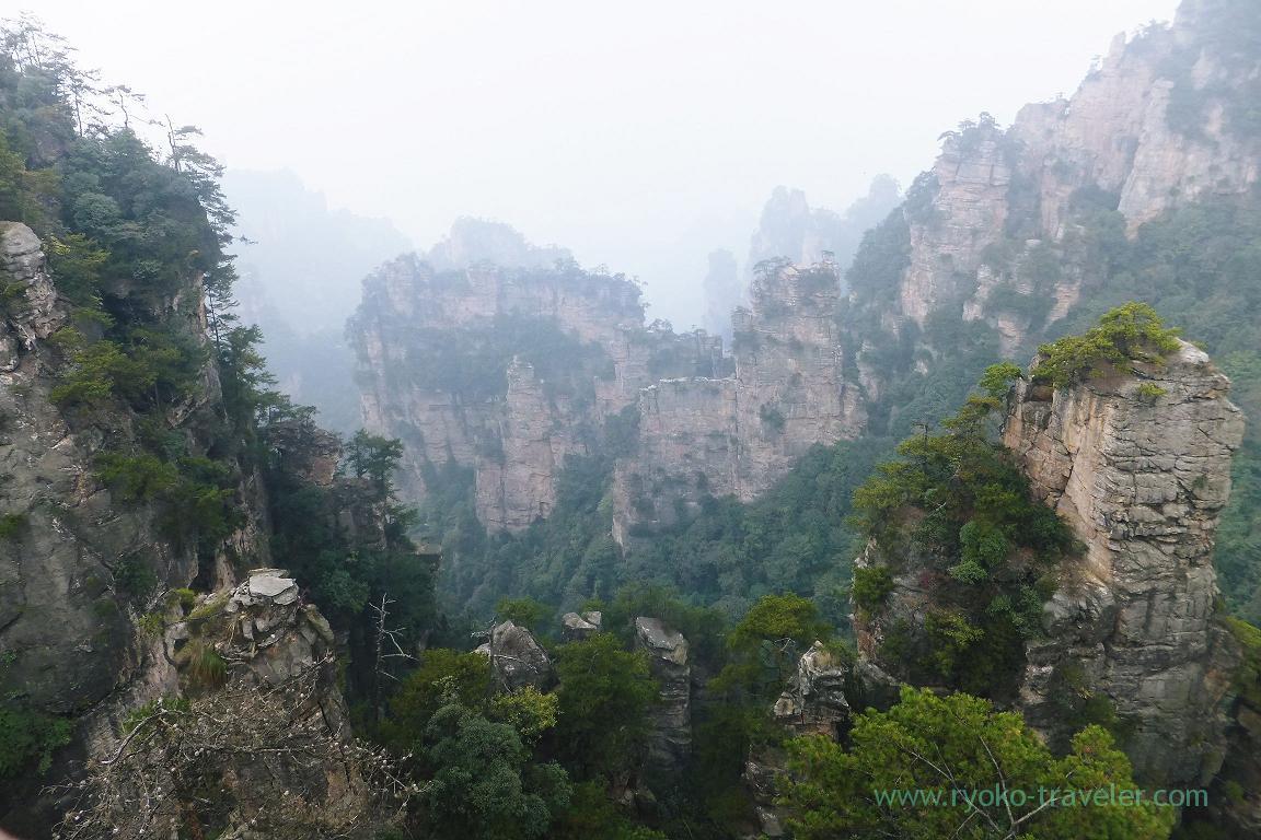 View 5, Cable car to Yuangjiajie ,Zhangjiajie(Zhangjiajie and feng huang 2015)