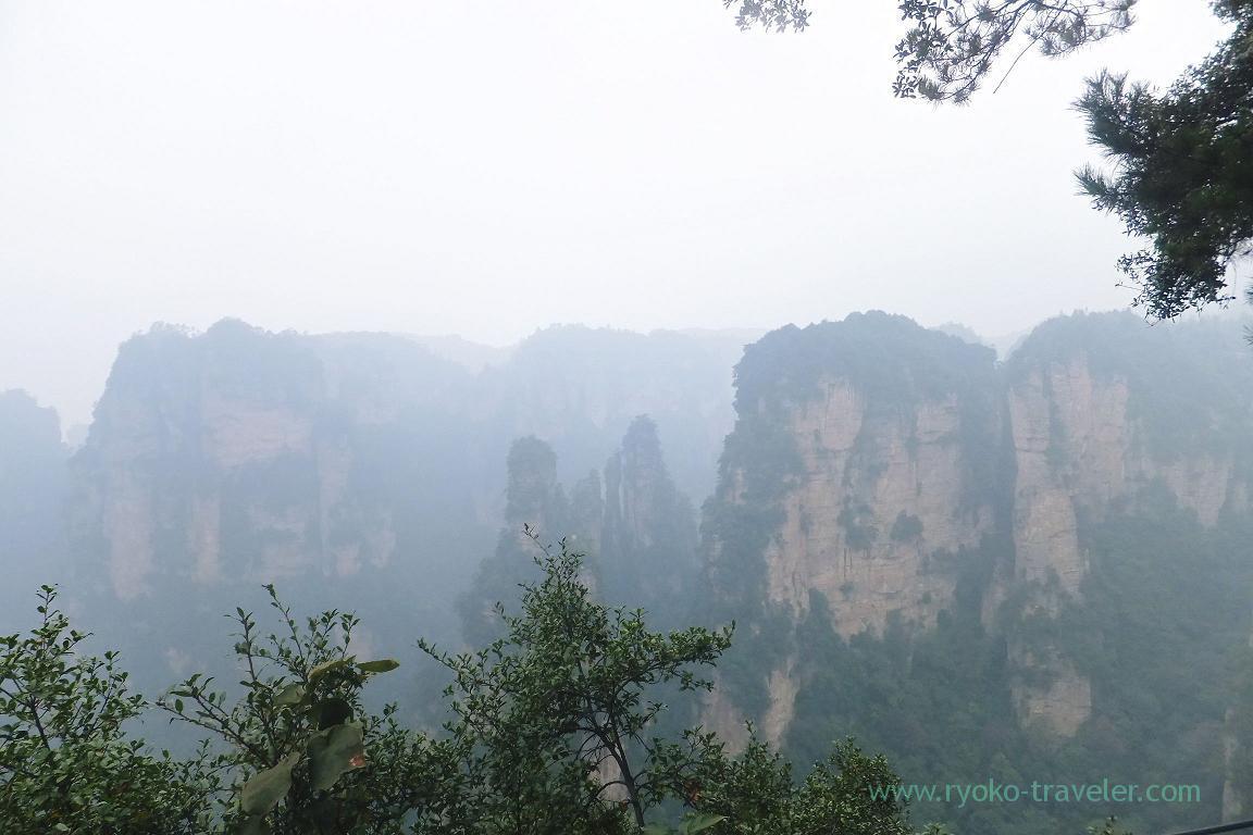 View1, Yuangjiajie ,Zhangjiajie(Zhangjiajie and feng huang 2015)