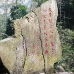 Zhangjiajie and feng huang : National forest park and Gold whip stream