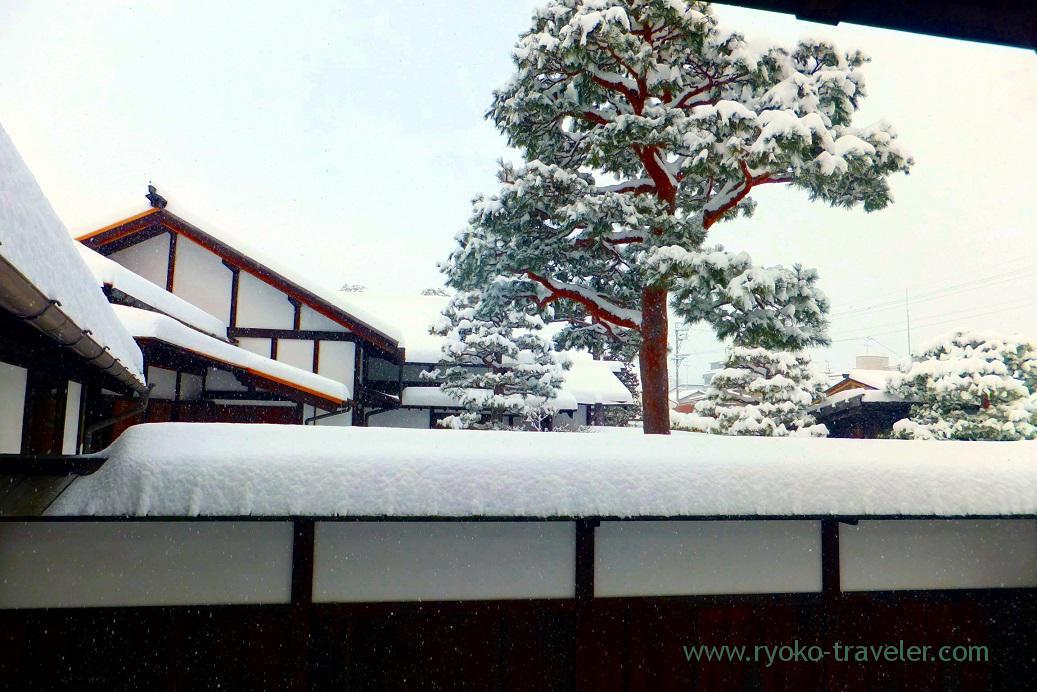 cold, Takayama Jinya, Takayama (Hokuriku&Tokai 2016)