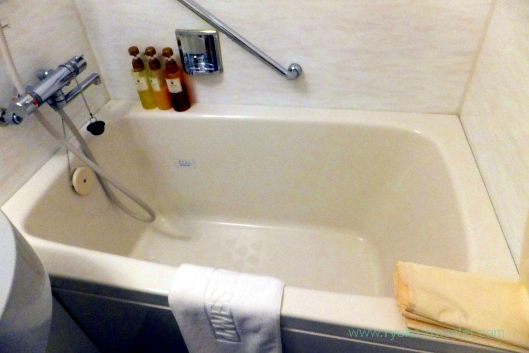 Bathtub, West coat Amami (Amami 2015)