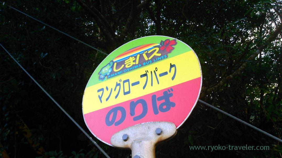 Bus stop of Mangrove park (Amami 2015)