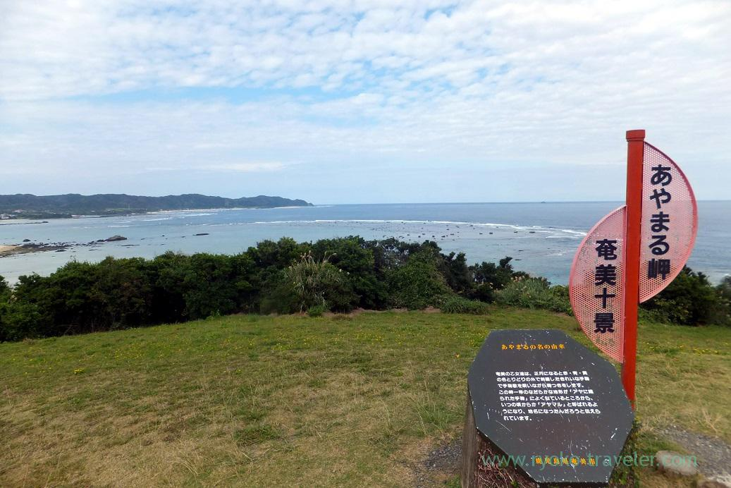 View, Cape Ayamaru (Amami 2015)