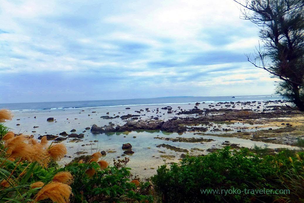 Went down, Cape Ayamaru (Amami 2015)