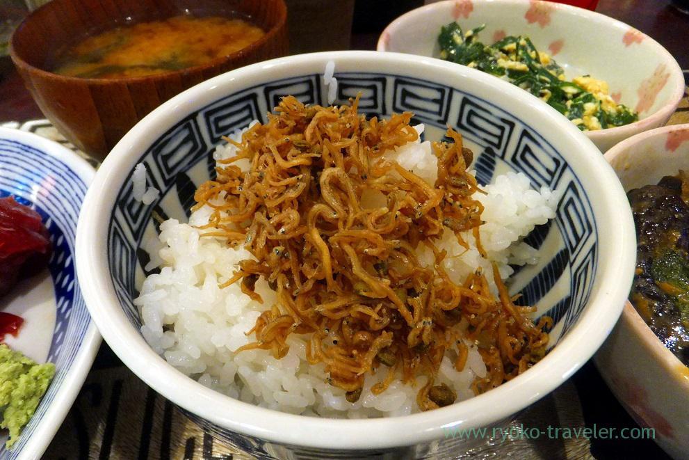 Rice and dried young sardines with sansho pepper, Yonehana (Tsukiji market)