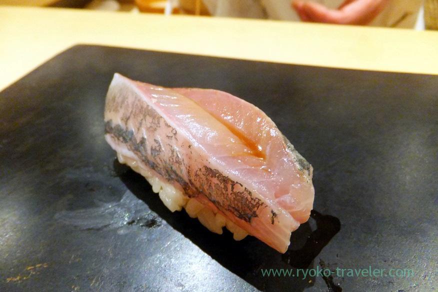 horse-mackerel-sushi-hashimoto-shintomicho
