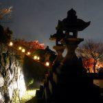 Kyoto : Light-up Autumn leaves at Kiyomizu temple (清水寺)