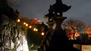 Kyoto : Light-up Autumn leaves at Kiyomizu temple (清水寺)
