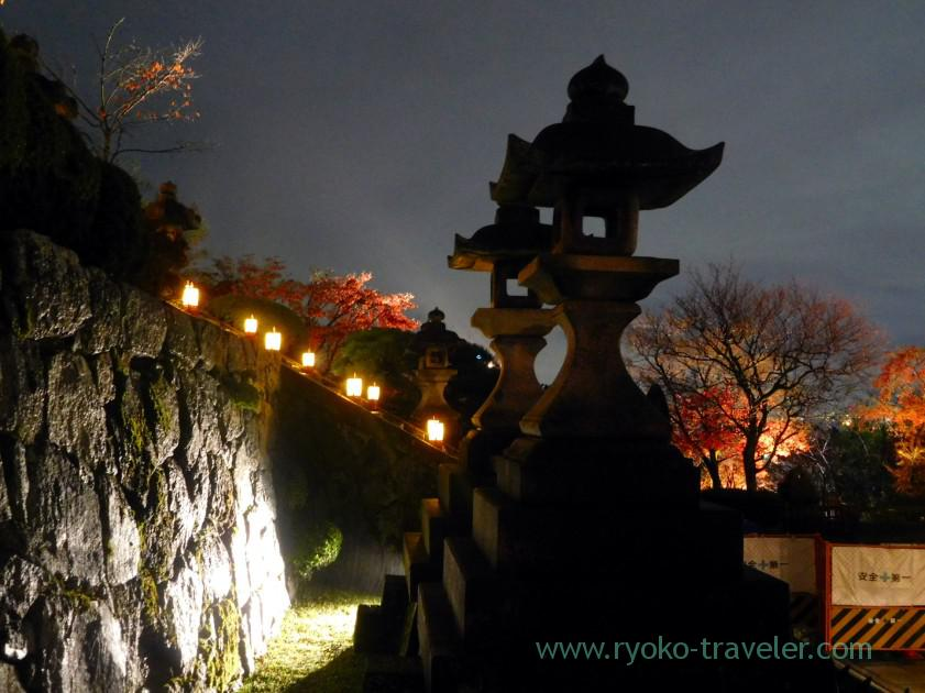 lightlight-up-autumn-leaves-show-kiyomizu-temple-kyoto
