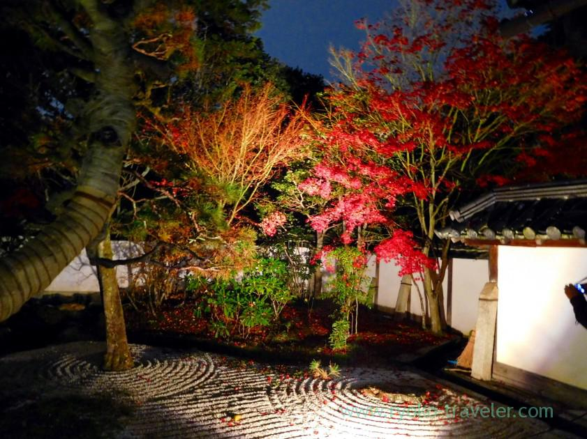 lightup-autumn-garden1-tenjyuan-temple-keage