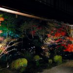 Kyoto : Light-up Autumn leaves at Tenjyuan temple (sub-temple of Nanzenji temple)