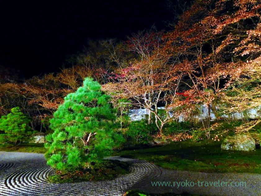 lightup-autumn-garden4-tenjyuan-temple-keage