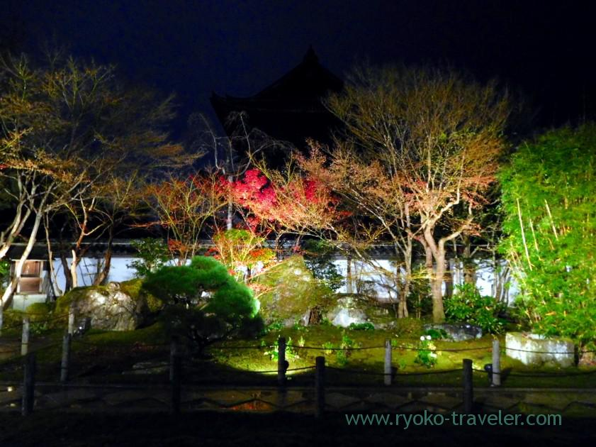 lightup-autumn-garden6-tenjyuan-temple-keage