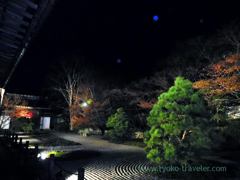 lightup-autumn-garden7-tenjyuan-temple-keage