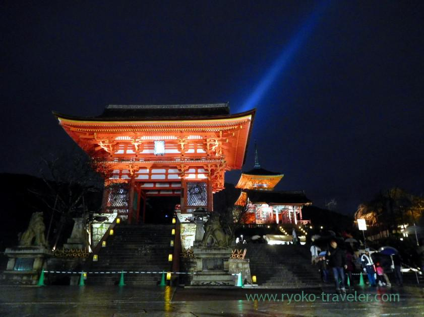 night-view-of-kiyomizu-templelight-up-autumn-leaves-show-kiyomizu-temple-kyoto