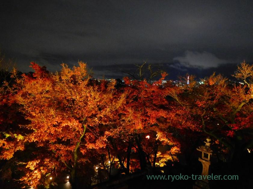 view-from-kiyomizu-no-butai-1light-up-autumn-leaves-show-kiyomizu-temple-kyoto