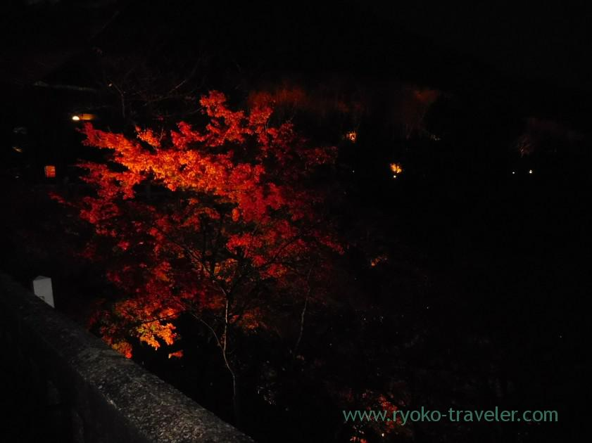 view-from-kiyomizu-no-butai-3light-up-autumn-leaves-show-kiyomizu-temple-kyoto
