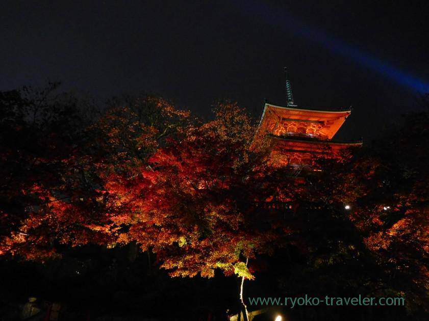 view-at-the-bottom-2light-up-autumn-leaves-show-kiyomizu-temple-kyoto
