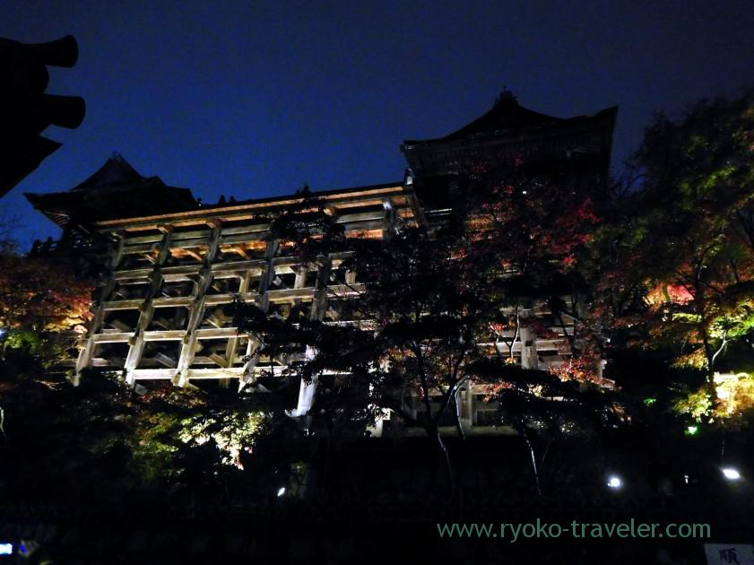 view-at-the-bottom-3light-up-autumn-leaves-show-kiyomizu-temple-kyoto