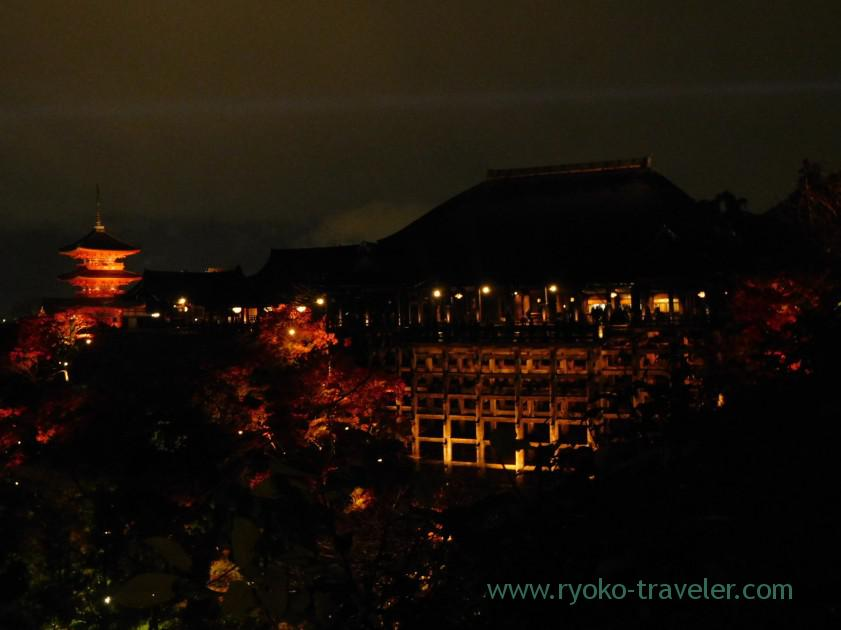 view-of-kiyomizu-stage-2light-up-autumn-leaves-show-kiyomizu-temple-kyoto