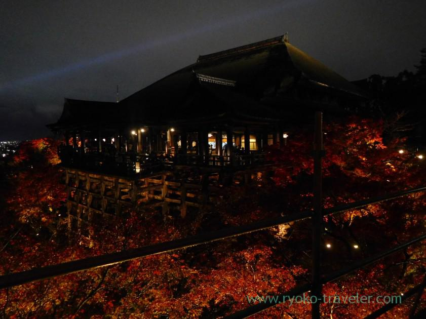 view-of-kiyomizu-stagelight-up-autumn-leaves-show-kiyomizu-temple-kyoto