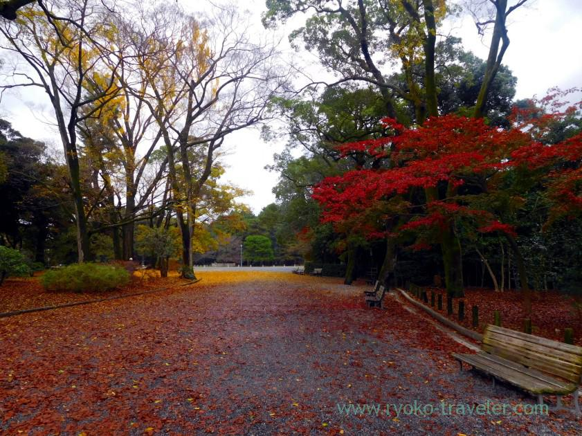 red-world-kyoto-imperial-garden-marutamachi